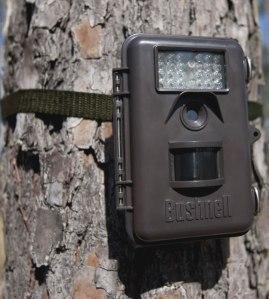 bushnell deer cam, trophy cam, deer hunting camera, trail cam, best trail cam,